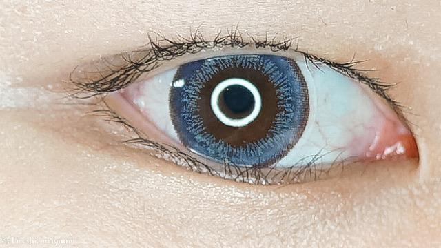 eye closet ワンデー シフォンネイビー