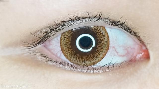 eye closet ワンデー スウィートシリーズ スウィートブラウン